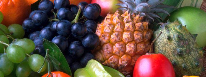 frutas oficina